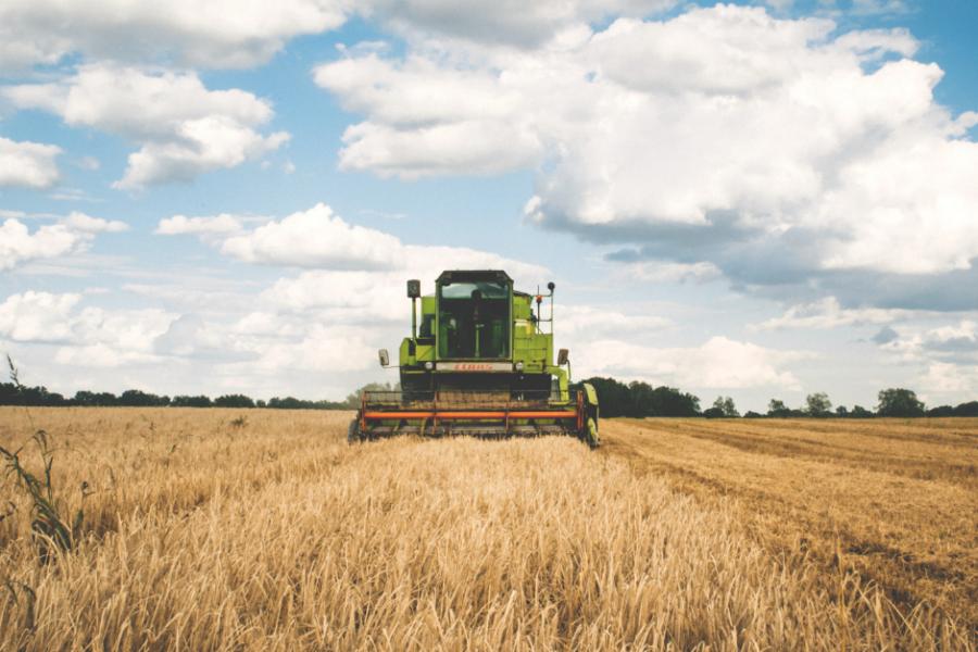 Progetto di legge per interventi urgenti in agricoltura